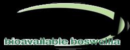 workvel-logo.png